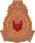 RAF-39-1021
