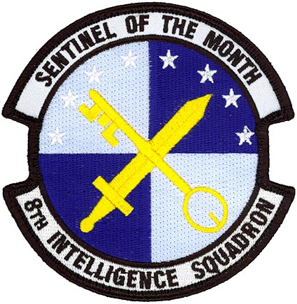 8th Intelligence Squadron Sentinel Of The Month Flightline Insignia