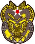 USAF-IG-11